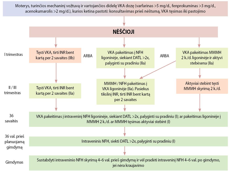 1 laipsnio hipertenzijos gydymo režimas