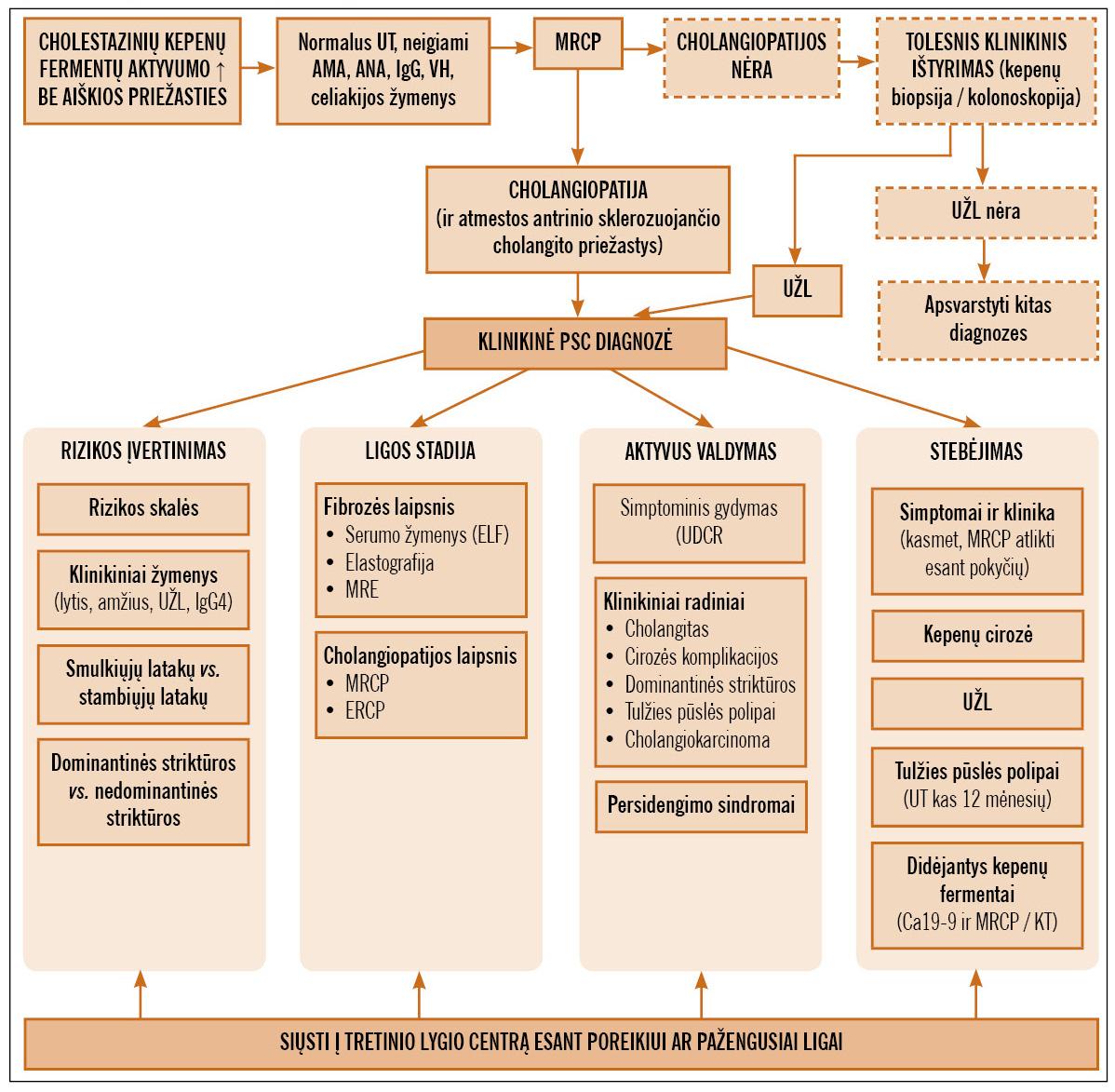 hipertenzijos diagnostikos centrai