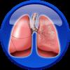 Kvėpavimo sistemos ligos
