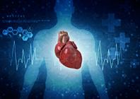 Mikrovaskulinė vainikinių arterijų disfunkcija
