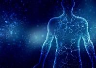 Molekulinė alergijos maistui diagnostika