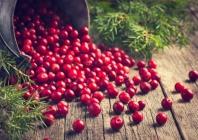 Europos širdies ritmo asociacijos ne vitamino K antagonistų geriamųjų antikoaguliantų skyrimo, esant ne vožtuvinės kilmės prieširdžių virpėjimui, atnaujintos rekomendacijos