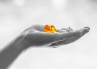 Kaip diagnozuoti ir gydyti lėtinę spontantininę dilgėlinę?