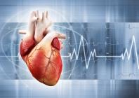 Kardiomiopatijų diagnostika. Europos kardiologų draugijos Miokardo ir perikardo ligų darbo grupės ataskaita (požiūris)