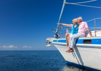 Erškėtuogių miltelių preparatų veiksmingumas kelio osteoartritu sergantiems pacientams